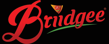 briidgee-logo-final