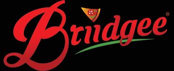 briidgee-logo-final